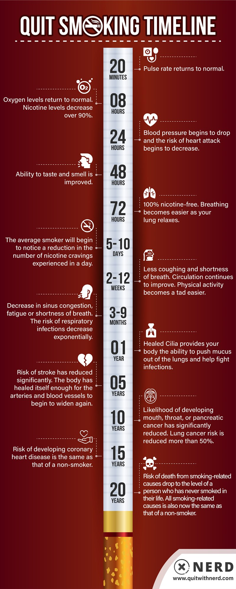 Quit Smoking Timeline - What Happens When You Stop Smoking (INFOGRAPHIC)